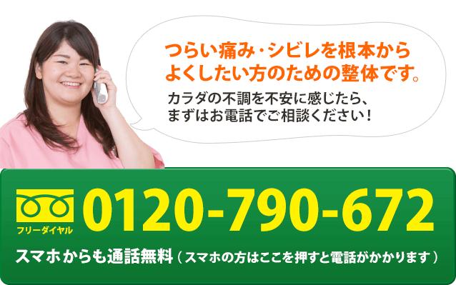 電話番号:0120-790-672